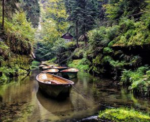 Gorges of Kamenice – A Day Trip From Prague   Northern Hikes