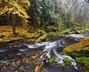 Four Seasons of Bohemian – Saxon Switzerland   Northern Hikes