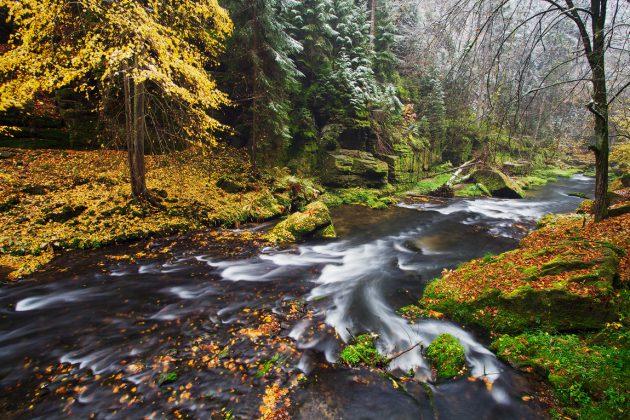 Four Seasons of Bohemian – Saxon Switzerland | Northern Hikes