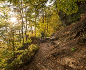 Bohemian Switzerland by locals I – interview with a local guide   Northern Hikes